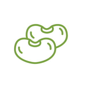 Icon_Kidney Beans