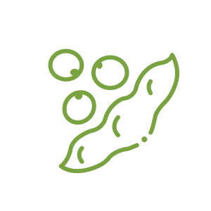 Icon_Soy Beans